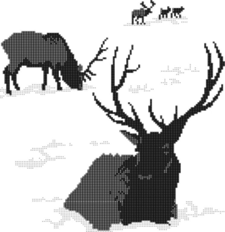 elks (Medium)