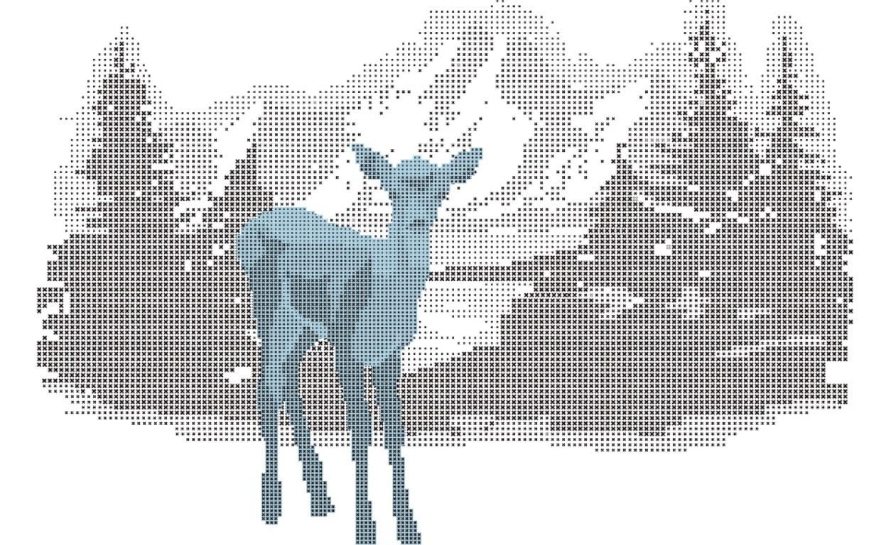fawn (Medium)