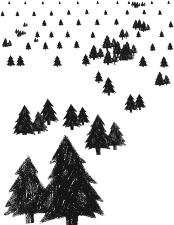 meny-trees-lowrezsmall (Medium)